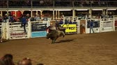 quarto : bull rider in slow motion at a prca professional rodeo