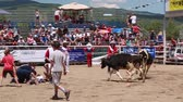 quarto : calf riding at a fun kids rodeo
