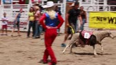 quarto : children riding sheep at a fun kid rodeo