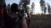 carbine : A deer hunter walks through the green woods with rifle