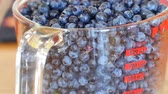 amoras : A jar of fresh picked wild blueberries tilting shot