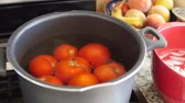 peeling onion : Boiling tomatos for salsa in a pot