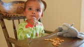 jedzenie : Cute toddler eating cereal in his highchair with stuffed animal Wideo