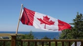 póly : Slow motion of the canadian flag in wind
