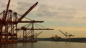 бизнес : Cranes on Port (HD). Large cranes at dusk on a large commercial port. All logos and numbers have been taken out of the cranes. Clip speed up 50%.