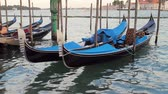 marcos : Venice Gondolas Docked (HD). Blue gondola boats docked near plaza Saint Marks Square in Venice Italy. All logos and boat IDs removed or blurred out.