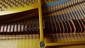 chaves : Grand Piano Strings & Keys With Motorized Dolly Motion.