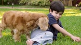 игривый : Kid with Cocker Dog (HD). Child four years old hispanic origin with cocker spaniel female dog playing and petting.