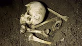 assassinato : Covering Human Bones With Dirt.    All Fake Ceramic Bones. Vídeos