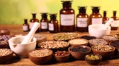 magik : Assorted natural medical herbs and mortar Wideo