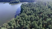 boreal : River flowing in the woods on a sunny summer day, Aerial drone