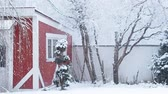 blow : heavy snowfall with red house and trees covered with snow in the background Stock Footage
