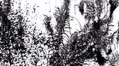 выгравированы : Cloud of fluff flying from the willow herb, black and white high contrast inverted video with engraving effect