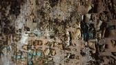 estuque : Old destroyed wall with several layers of paint