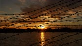 люди : barbed wire on sunset Стоковые видеозаписи