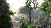 lumiere naturelle : fog steam with waterfall in the garden Vidéos Libres De Droits