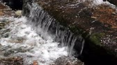 yosemite : Small Waterfall Over Step In Stream Yosemite Stock Footage