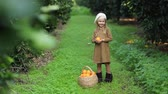 plaid : little girl in a beret near a basket of oranges Stock Footage
