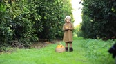 vime : Little girl with oranges standing in green garden smiling at camera Stock Footage
