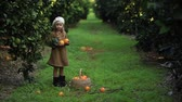 мандарин : Smiling gardener little girl holding orange harvest Picking orange in garden