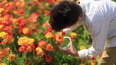 davidstern : child cuts touching orange buttercup flower