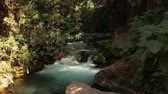 golan : Nahal Hermon (Hermon Stream). Sanctuary of Banias Israel Stock Footage