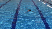 borboletas : boy swims in a pool with blue water