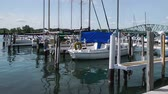 summer vacation : Marina on the Detroit River Stock Footage