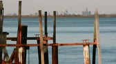 distante : Old Docks on Detroit River Skyline South Stock Footage