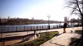 avignon : Young couple and their dog walk on the promenade Stock Footage