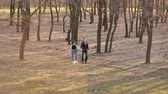 бикини : Pair of lovers walks in the park in early spring Стоковые видеозаписи