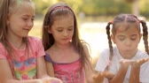 pigment : On a sunny summer day, children spend time on the lawn, play with colorful sand, spray it. Festival of colors Stock Footage