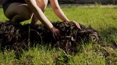 negrito : The owner of the dog plays with her on the green lawn. Happy dog playing with woman