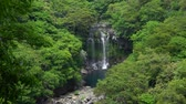 jeju island : Cheonjeyeon 2nd waterfall. Cheonjeyeon is a three-tier waterfall, which is one of the most famous falls in Jeju island, Korea. The forest around the falls was designated as a Natural Monument No.378.