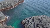 jeju island : Daepo Jusangjeolli at Jungmun in Jeju, Korea. Jusangjeolli is a cliff made of basaltic columnar jointings at Jisatgae coast and one of the most famous attractions in Jeju. Stock Footage