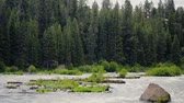 flexionar : View of the Deschutes River in central Oregon passing by Vídeos