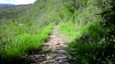Path in rural Colombia linking the towns of Barichara and Guane