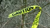 alerta : Caution Tape tied to tree branch Stock Footage