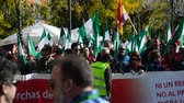 política : Sevilla (Spain) 29th November 2014 - March of the Diognity
