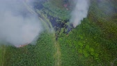Flight through a smoke from burning green field, wild fire in nature landscape, aerial footage from drone