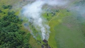 kontrast : Aerial footage from drone of burning green grass next to a forest, fire approaching green forest, Flight over a smoke Stok Video