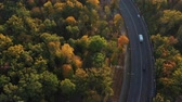 сентябрь : Goods transported by truck. Transport Logistics and Freight. Epic aerial flight over autumn forest and road. Cars drive along the road along the park, the atmosphere. Aesthetics of autumn nature. B