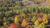 colorful backgrounds : Drone view of autumn forest in mountains illuminated with sunset light. Multicolor tree leaves in autumn forest. Dirt road on a hill.