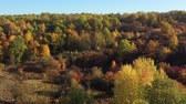 сентябрь : Epic aerial flight over the autumn forest. Aesthetics of autumn nature. Sunlight on the leaves. Flying over the natural landscape. Aesthetic travel video footage. Стоковые видеозаписи