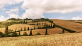 timelapse tuscany hills landscape. sunny meadows field Wideo