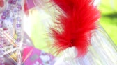 tollazat : A gift decorated with a red feather bounces to the breeze during an outdoor party. Stock mozgókép