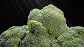 empilhados : While in the produce section, a grocer sprays cool water over ripe broccoli stems to keep them fresh
