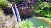 гавайский : Beautiful Opaekaa Falls in Kauai Hawaii pours into a natural pool and is one of Kauais more visited tourist attractions.