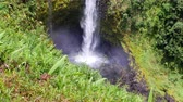 гавайский : A towering Akaka Falls in Hilo, Hawaii cascades 400 feet to a natural pool, often seen with a rainbow when the mist is heavy and the sun is bright. Стоковые видеозаписи