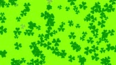рассеянный : St. Patricks animated clovers against a bright green background. For use as a general backdrop, design element or as an overlay for placement of text or other copy. Стоковые видеозаписи